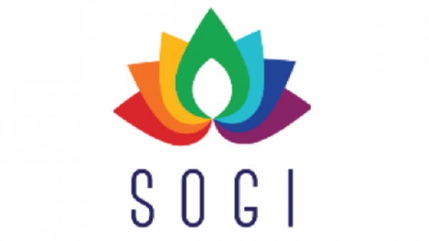 Sexual Orientation and Gender Identity (SOGI) and Development