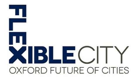 Image result for oxford future of cities