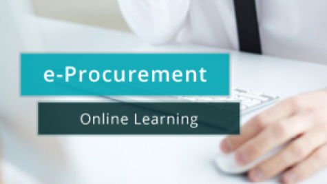 E-Procurement Learning (Self-Paced)