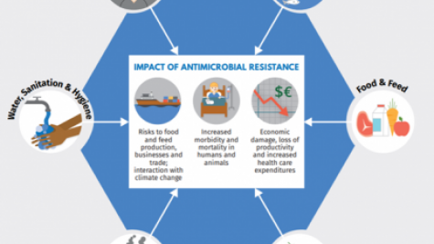 Addressing Antimicrobial Resistance (AMR) – Self-paced training module