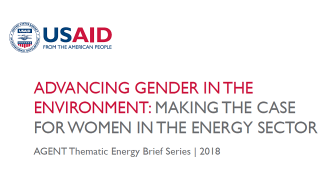 Advancing Gender in the Environment: Making the Case for Women in the Energy Sector