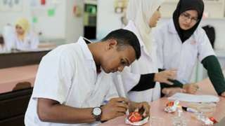 Africa Centers of Excellence: Transforming Science & Technology Education