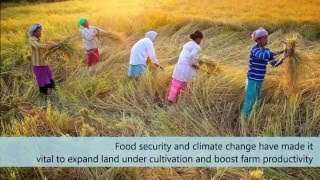 Fostering Agriculture-Nutrition Links : Recommendations for Agriculture Extension Curriculum Reforms in India