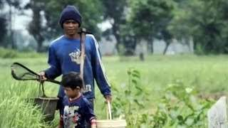 Informal Agriculture Workers in Indonesia Try to Avoid Poverty