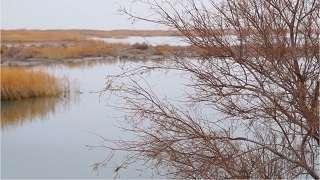 China: Saving Lake Aibi