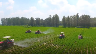 Climate-Smart Agriculture Helps Farmers Adapt in Xiaodong, China