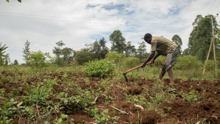 Climate-Smart Farming Helps a Community in Kenya Thrive in the Face of Climate-Change