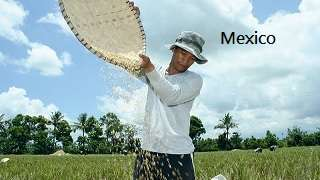 Climate Smart Agriculture in Mexico