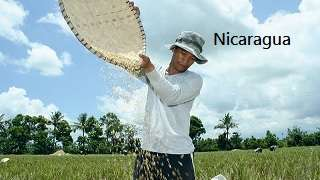 Climate Smart Agriculture in Nicaragua