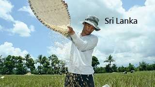 Climate Smart Agriculture in Srilanka
