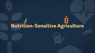 Nutrition-Sensitive Agriculture in Projects – Demystified