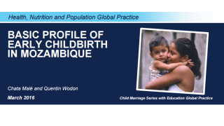 Basic Profile of Early Childbirth in Mozambique