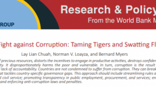 The Fight against Corruption: Taming Tigers and Swatting Flies