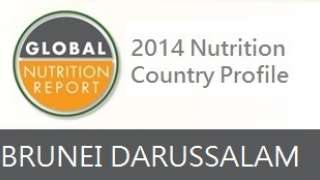 IFPRI Global Nutrition Country Profile: Brunei Darussalam