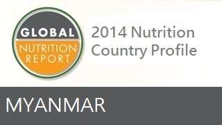 IFPRI Global Nutrition Country Profile: Myanmar