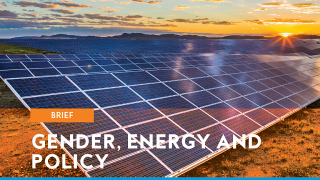 Gender, Energy and Policy