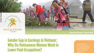 Gender Gap in Earnings in Vietnam: Why Do Vietnamese Women Work in Lower Paid Occupations?
