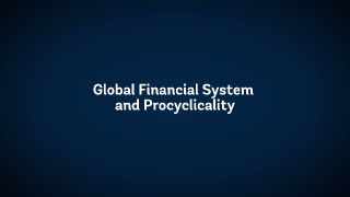 The State of Economics: Global Financial System and Procyclicality