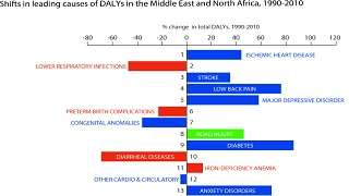 Global Burden of Disease: Generating Evidence, Guiding Policy Main Findings from the Middle East and North Africa Regional Edition