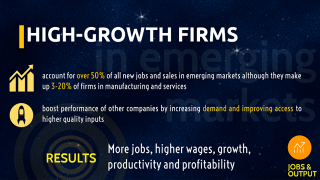 High-Growth Firms: Fact, Fiction and Policy Options for Emerging Economies