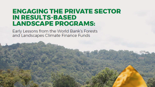Engaging the Private Sector in Results-Based Landscape Programs : Early Lessons from the World Bank's Forests and Landscapes Climate Finance Funds