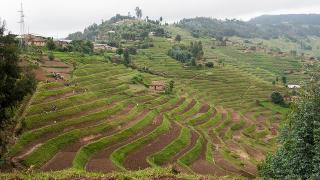Sustaining the Success of the Systematic Land Tenure Registration in Rwanda