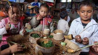 The Lao Cookstove Experience : Redefining Health through Cleaner Energy Solutions