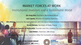 Market Forces at Work: Institutional Investors and a Sustainable World