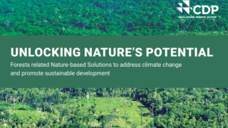 Unlocking Nature's Potential: Forests related Nature-based Solutions to address climate change and promote sustainable development