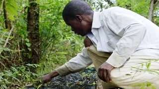 Take On: Pawpaw and Goats - Surprising Ways to Combat Climate Change in Kenya