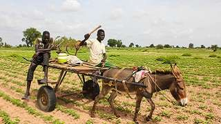 Public-Private Dialogue for Specific Sectors: Agribusiness
