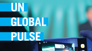 UN Global Pulse Annual Report 2017