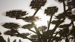 Young, Innovative, and Going Solar in Morocco