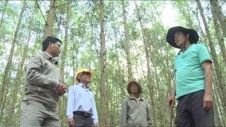 Vietnam: Seeds for Sustainable Planting