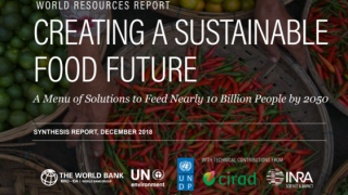 The World Resources Report: Creating a Sustainable Food Future