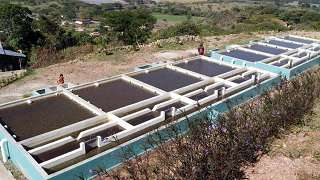 Decentralization of Water and Sanitation Services: Document Overview