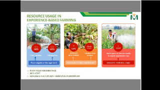 Innovation for Horticultural Challenges in Vietnam: Internet of Things for Precision Agriculture