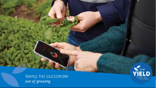 Taking the Guesswork out of growing: Internet of Things in agriculture