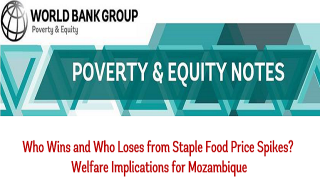Who Wins and Who Loses from Staple Food Price Spikes? Welfare Implications for Mozambique