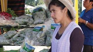 Participation of Women in the Second Participatory Rural Investment (PDCR): Case Study Bolivia