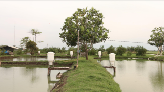 Digital Ag Series: eFishery- Creating the future of aquaculture with an IoT smart feeding technology to help millions of farmers at the bottom of the pyramid