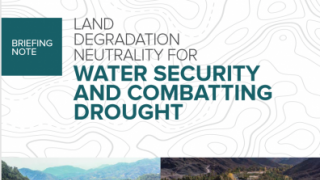 Land Degradation Neutrality for Water Security and Combatting Drought