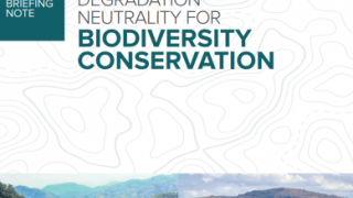 Land Degradation Neutrality for Biodiversity Conservation: How healthy land safeguards nature