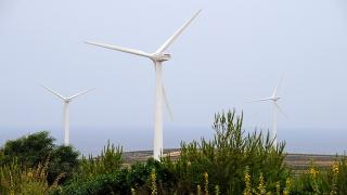 Energy Sector Strategies to Support Green Growth (Self-paced)