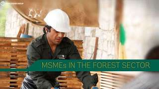 MSMEs in the Forest Sector (Self-Paced)