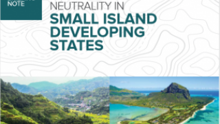 Land Degradation Neutrality in Small Island Developing States