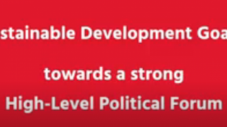 Sustainable Development Goals: Towards a Strong High-Level Political Forum