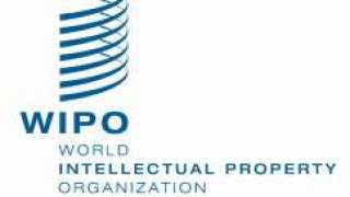 WIPO Academy Specialized Course on Open Source Software Licensing (DL-511)